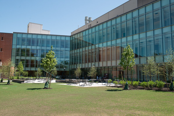 STEM Courtyard