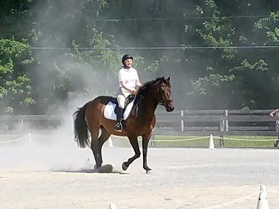 Oak Spring Equestrian 7/14