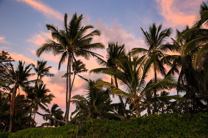 Hawaii-North Shore 2017-9409.jpg
