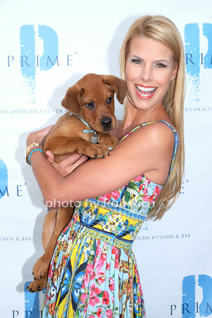 """Beth Ostrosky Stern Hosts""""A Gold Coast Affair"""" to benefit the North Shore Animal League at PRIME restaurant in Huntington, NY on 7-30-14.all photos by Rob Rich © 2014 robwayne1@aol.com 516-676-3939"""