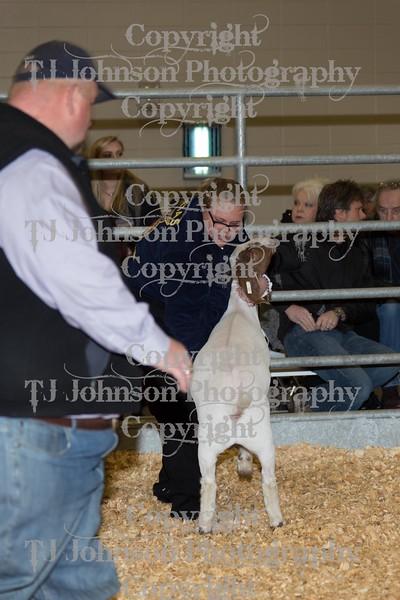 2016 KISD Goat Show Class 4