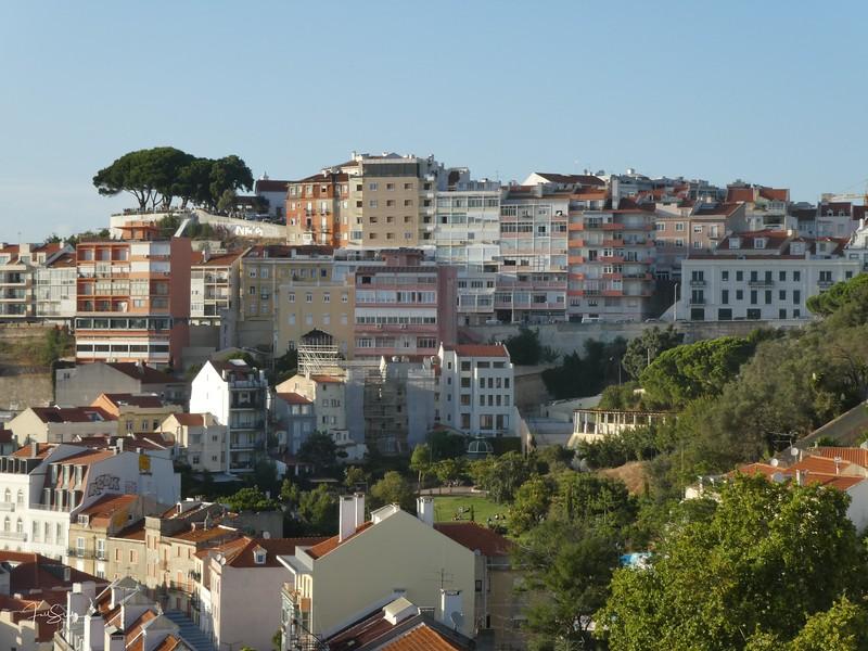 Lisbon August 19 -7.jpg
