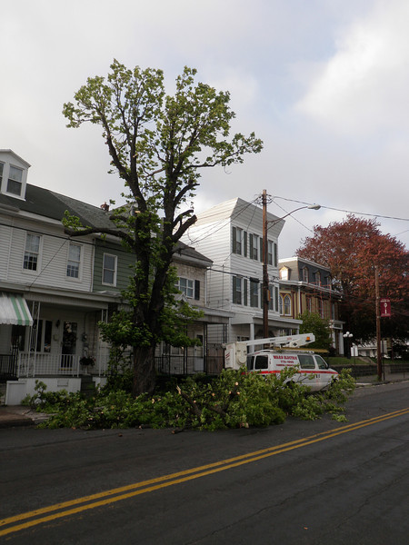 mahanoy city tree incident 5-8-2010 019.JPG