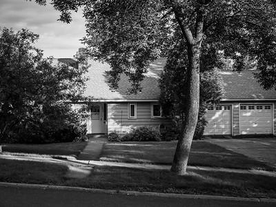 Neighborhood Scenes