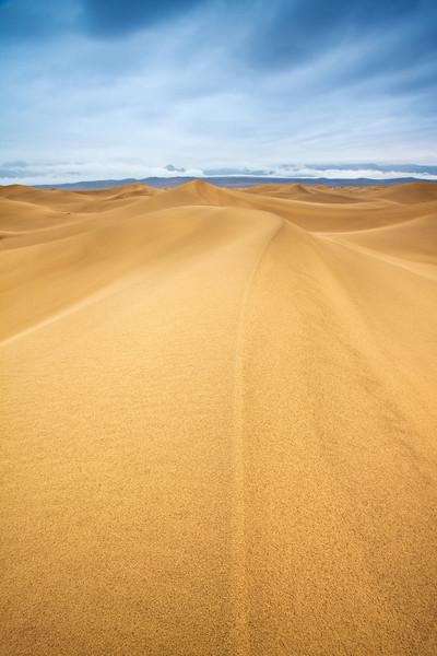 The Line in the Sand - Varina Patel
