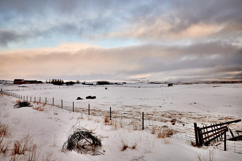 IcelandSelectsD85_1305.jpg