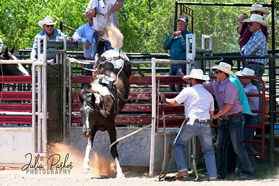 Elmwood Bucking Futurity by Julia Parker