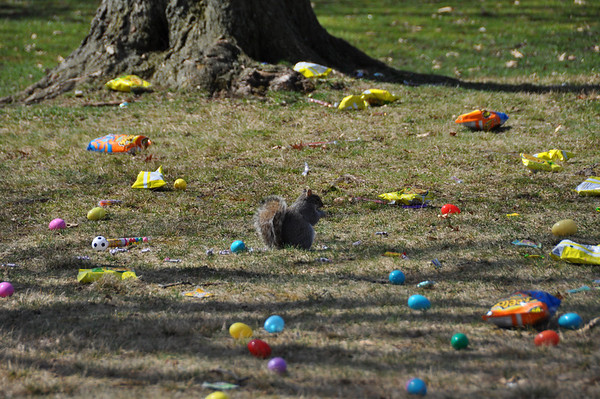 Williamsport Easter Egg Hunt 2010