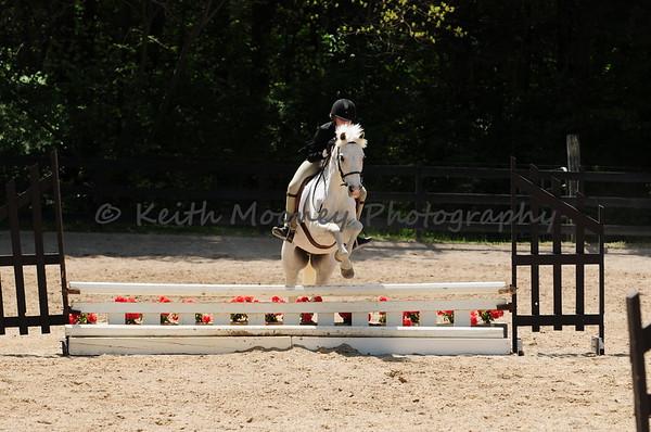 25-26-27-Pony Hunter-Handy Hunter