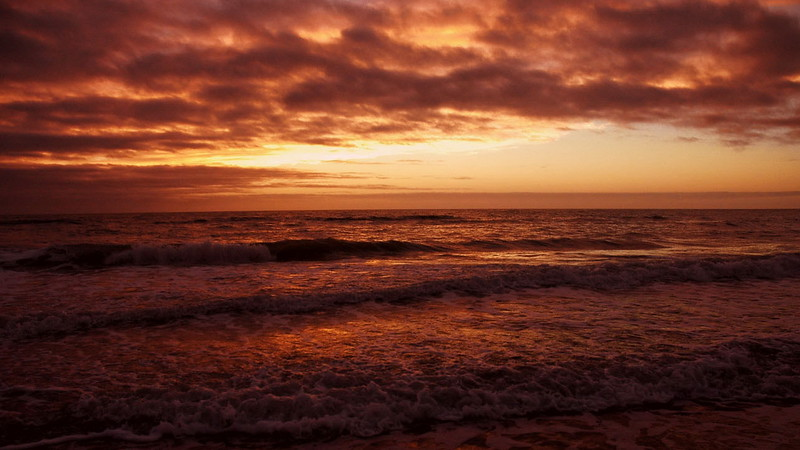 Florida 2005 9.JPG