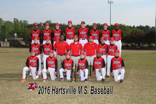 2016 Baseball MS