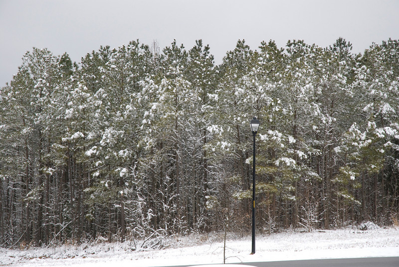SnowFeb13-2.jpg