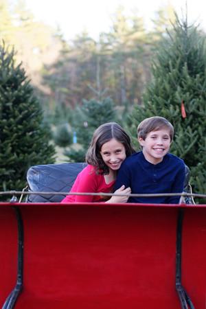 2015-12-06 - Christmas Tree