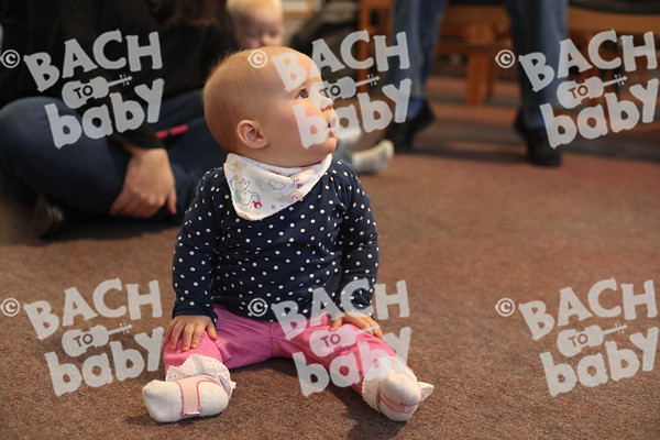 _​©Bach to Baby 2017_Luisa Nolasco_Chelmsford_2017-11-17_22.jpg