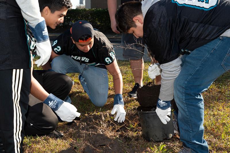 Tree Planting_Crenshaw_Preston__2020_039.jpg