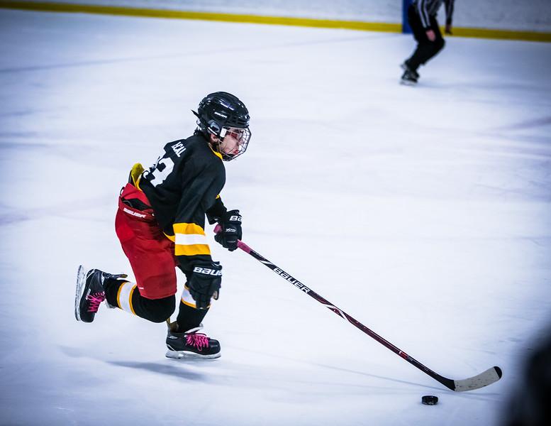 Bruins2-437.jpg