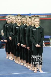 2017 Girls Gymnstics