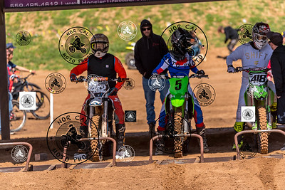 Race 10 450cc Nov/Vet Pro