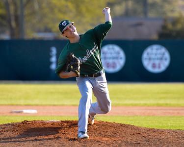 Woodland Baseball 2014
