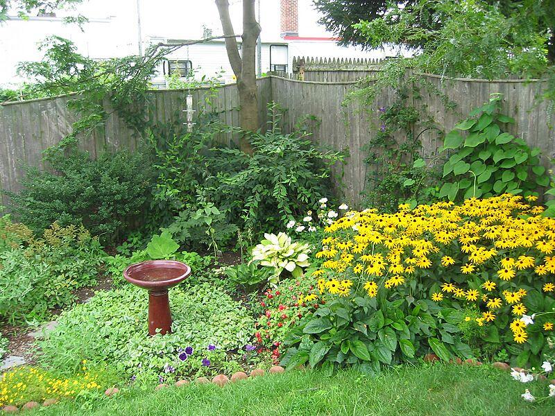 garden-2004-08-0224_std.jpg