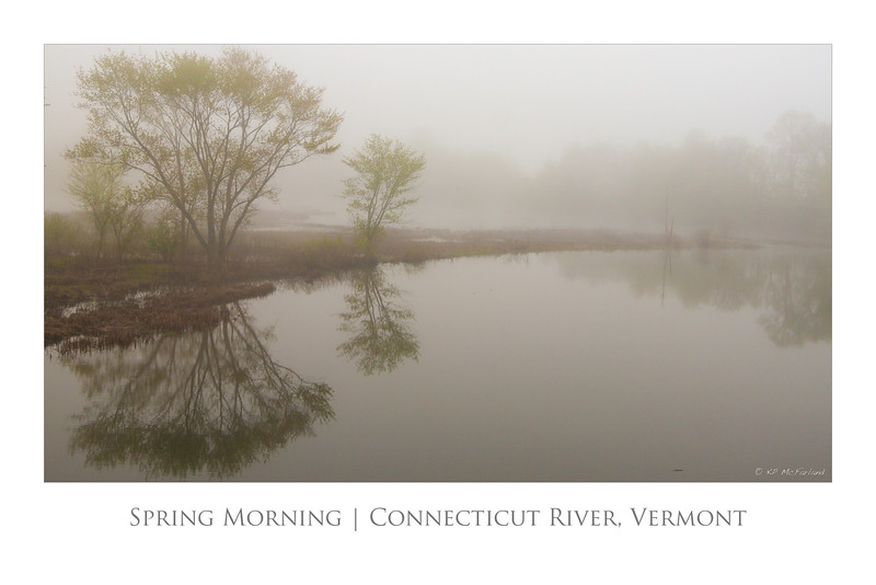 Spring Morning 30x20 poster.jpg