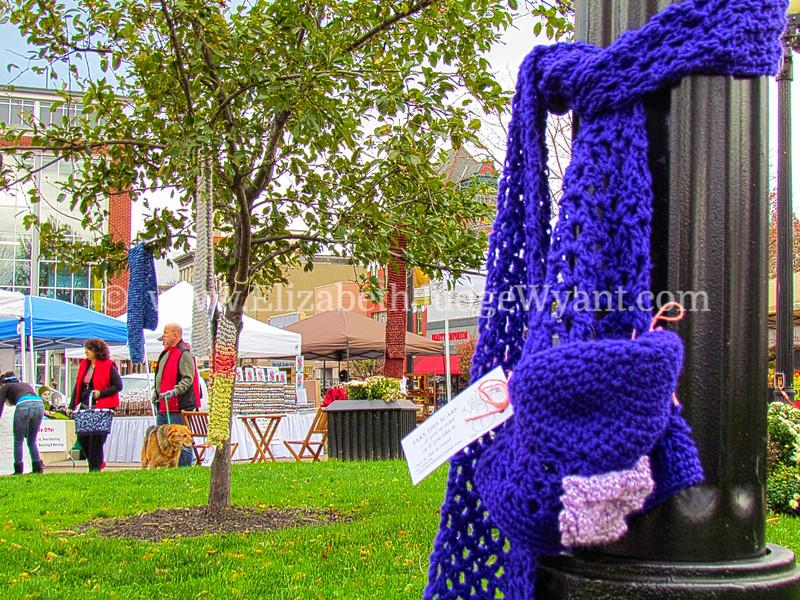 Easton Farmers Market, Easton, PA  11/3/2012
