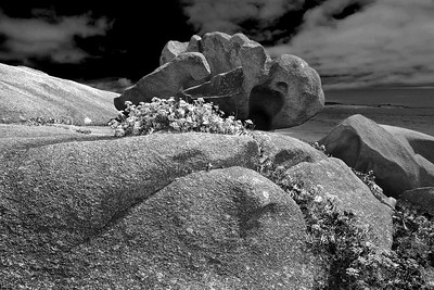 Forms and rocks