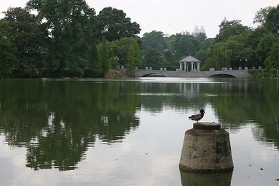 Georgia Parks