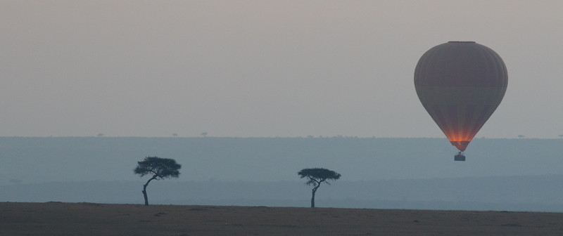 Kenya 2015-06196.jpg