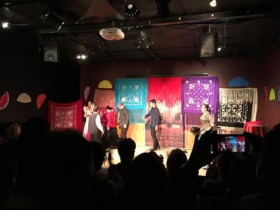 2018_01_13 Julian's Flamenco Show