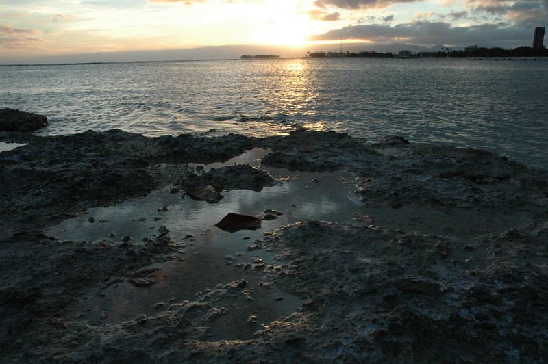 Hawaii - Ala Moana Beach Sunset-45.JPG