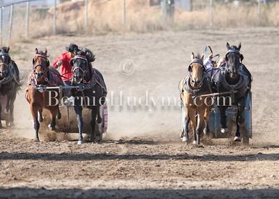 Chariot Races - Barriere 2012