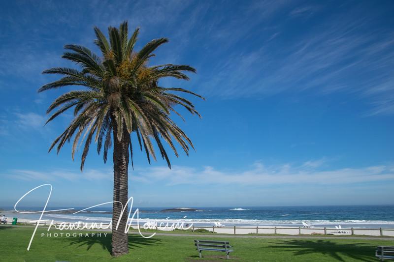 South Africa (295 of 5206).jpg