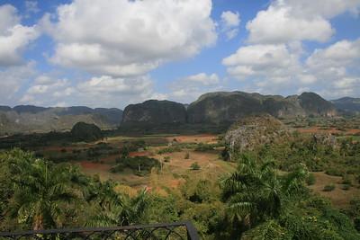 General Landscapes & Plants