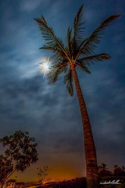 Star Moon