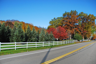 Beauty along the Byway