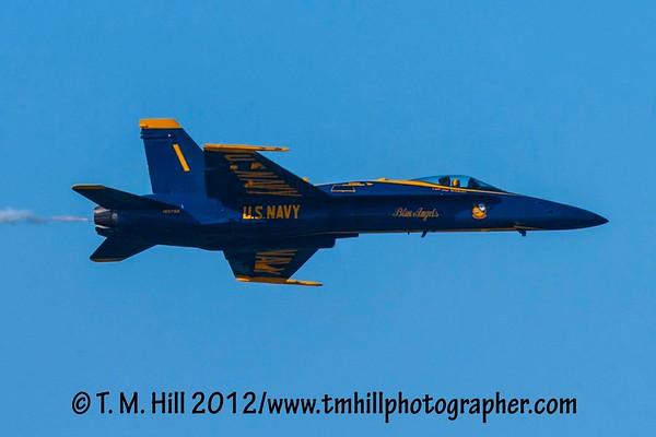 Fleet Weeks 2012