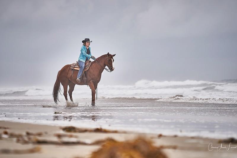 _DSC19830081@Catherine Aranda-LearnedOcean Romance©CAL..jpg