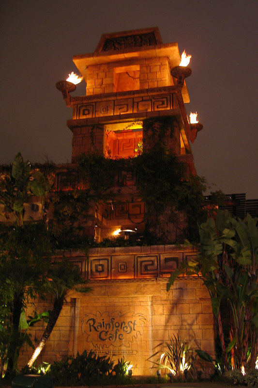 Rainforest Cafe in Downtown Disney