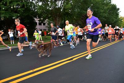 Walk Wag N' Run 2014 5K and 1 Mile Race Start
