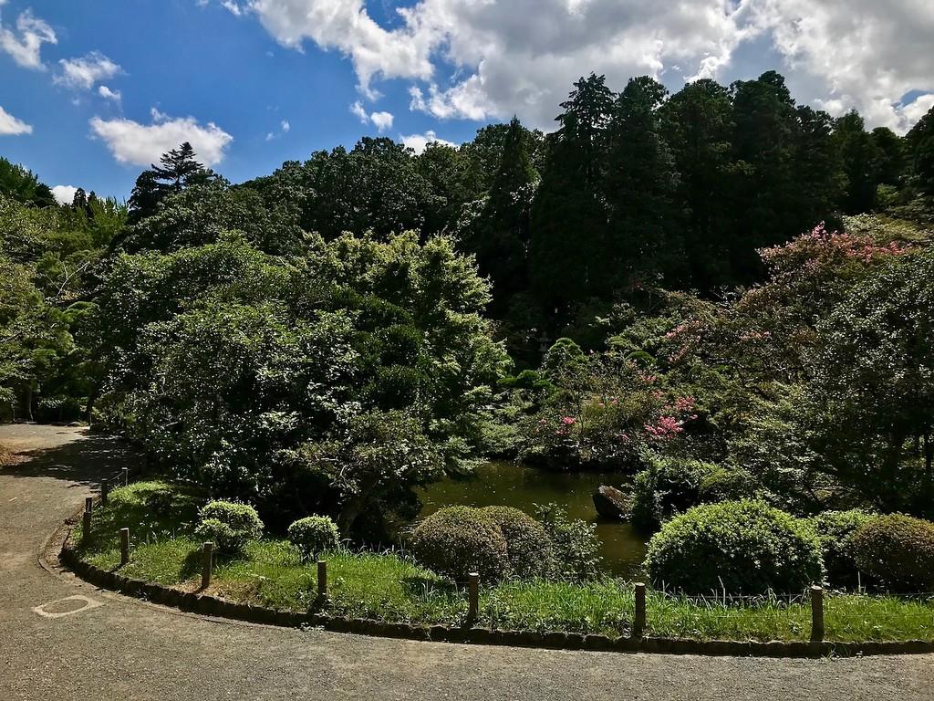 A strolling garden.