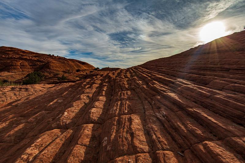 Fossil-Dunes-Snow-Canyon-Utah2.jpg