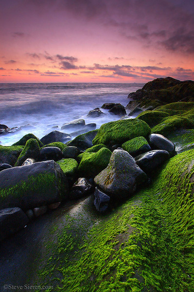 Pt Mugu Green Moss Southern California Seascape