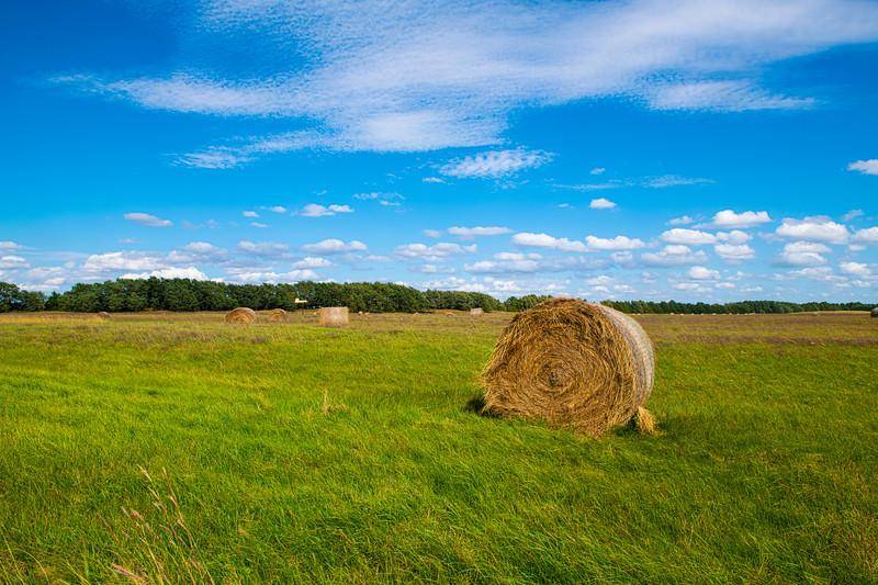 Horn Ranch-1205.jpg