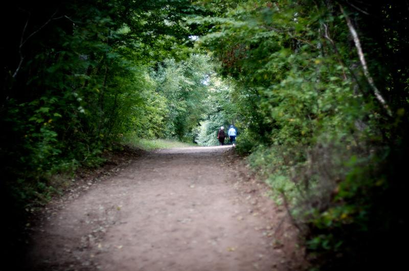 Lover's Lane, around Green Gables farmhouse