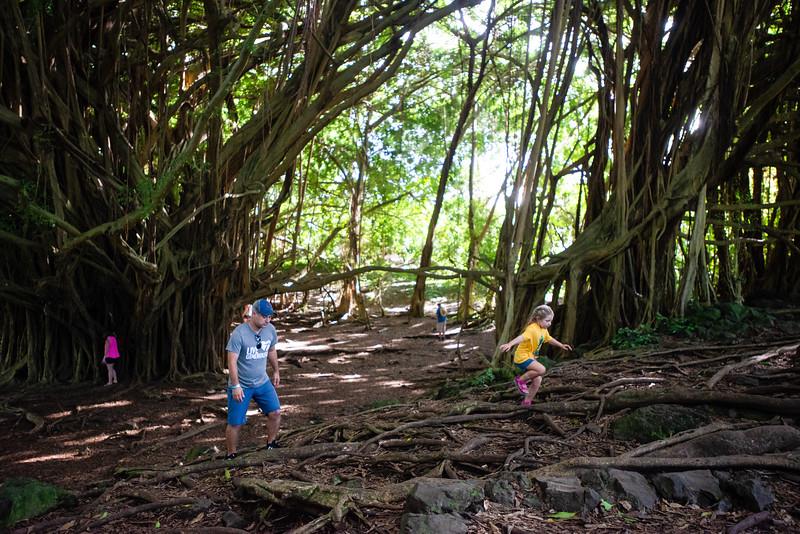 Hawaii2019-246.jpg