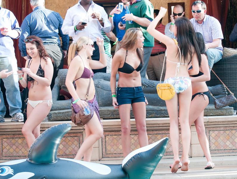 041211_Vegas-274_Web.jpg