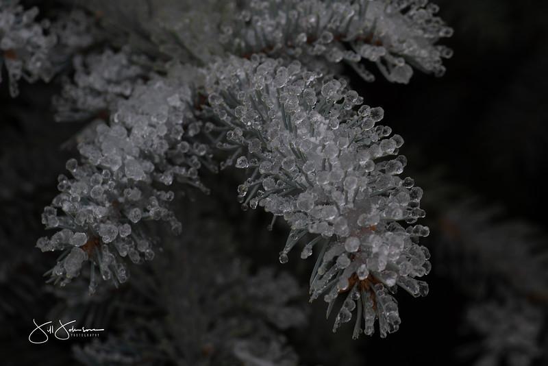 ice-0001.jpg