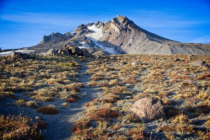 Timberline - East side Climbers Trail
