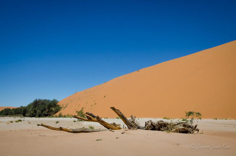 Namibia-4522.jpg